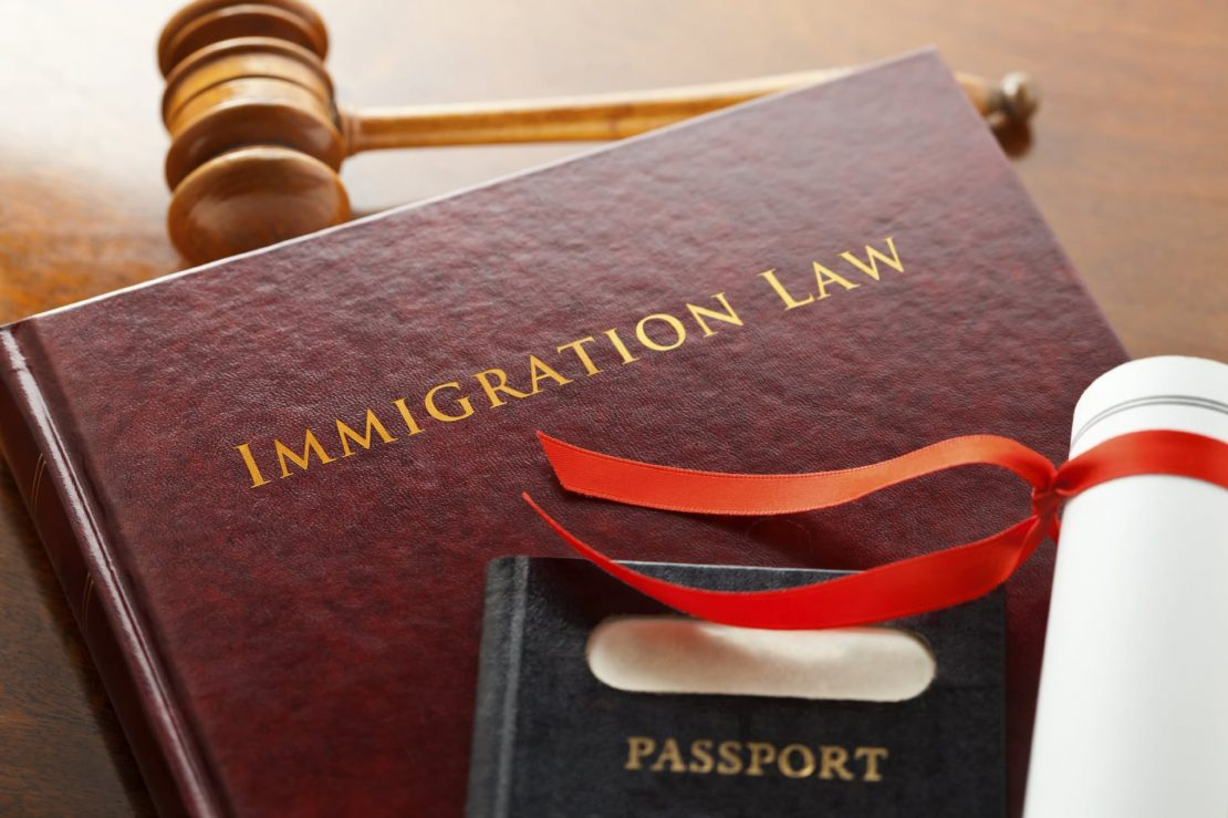 Immigration law image